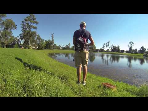 Fishing report - Bass fishing on a Texas golf course 1080p HD Video