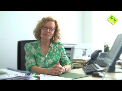 María Novo, Cátedra UNESCO de Educación Ambiental y Desarrollo Sostenible UNED