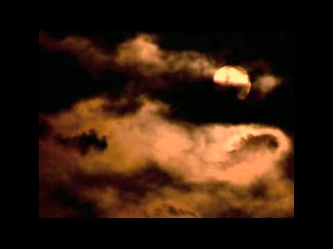 Blood Moon Book Trailer - T. Lynne Tolles - New Adult Paranormal Romance Fiction