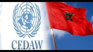 بالفيديو..هذا ما سيستفيده المغرب في حال انضمامه إلى سيداو |