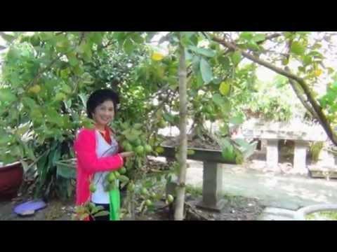 CLB Thái Thịnh Giao lưu tại Bắc Giang