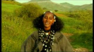 Awetu Ayalu - Ere Yalem Wedo Yemiwedih ያለም ወዶ የምወድህ (Sekota Agew Amharic)