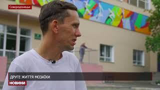 В Сєвєродонецьку завершили мурал на фасаді ДЮСШ№ 2