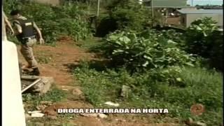 Dorga enterrada em horta - Alterosa em Alerta 30/ 01