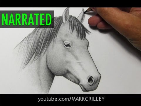 How to Draw a Horse [Narrated Step by Step]