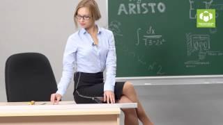 Складные перегородки ARISTO. Система 4 в 1