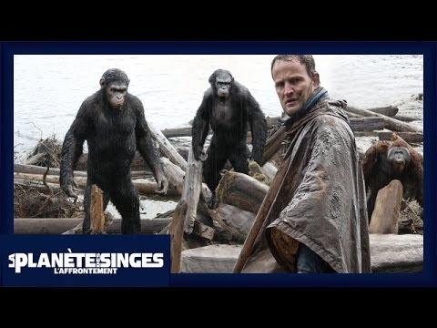 Image video bande annonce film la Planète des Singes : L'Affrontement