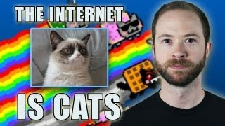 Is the internet cats?