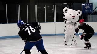 The life of PyeongChang 2018 Mascot #14