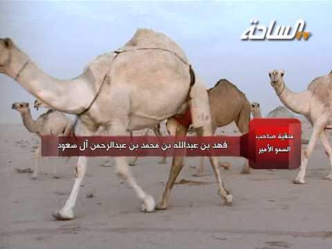 منقية صاحب السمو الأمير فهد بن عبدالله بن محمد بن عبدالرحمن آل سعود (الشقح)