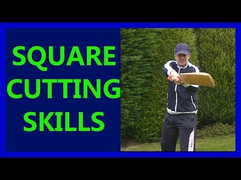 HD Cricket Video How to Play Cricket Square Cut Shots Tutorial Tips Pt2 Left