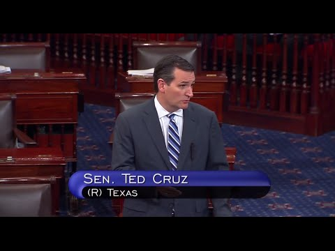 Sen. Ted Cruz: This is a Humanitarian Crisis of the President's own Making