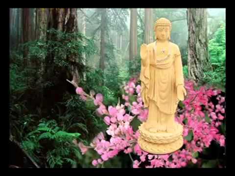 Nam Mo A Di Da Phat 2011.mp4 - Phật Pháp Vô Biên
