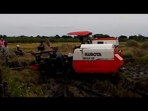 Kubota máy gặt lúa - Vụ mùa