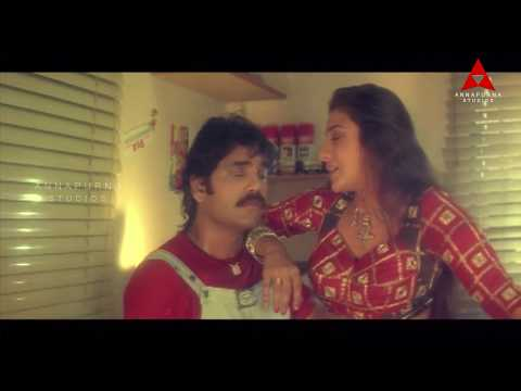 Sisindri Movie || Nagarjuna & Tabu Romantic Love Scene