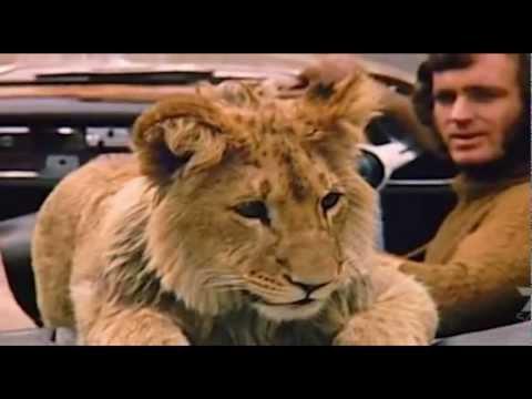 O Leão Christian - Versão Longa e Legendada PT-BR