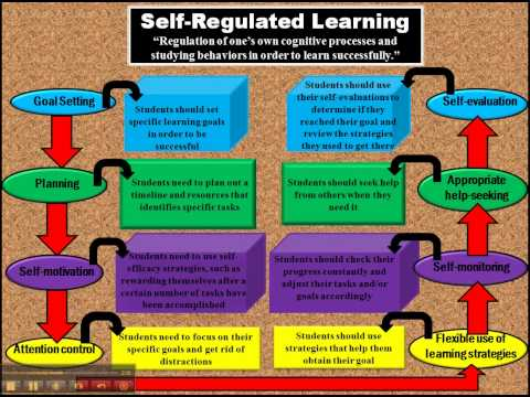 self regulated learning dissertation