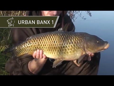 Urban banx časť 1. by Alan Blair