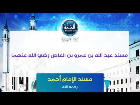 مسند عبد الله بن عمرو بن العاص رضي الله عنهما [2]