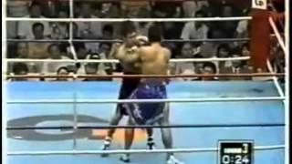 Funny Boxing Tinju Lucu