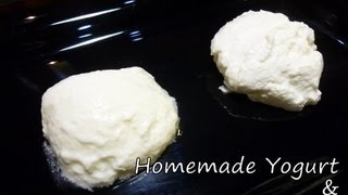 Cooking | homemade yogurt home | homemade yogurt home