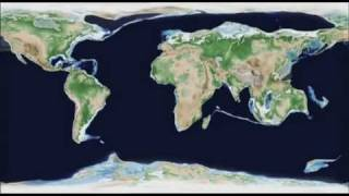Video 650 Million Years In Under 2 Minutes