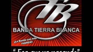 Borracho de amor (audio) Banda Tierra Blanca