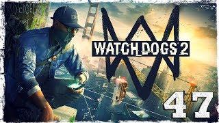 Watch Dogs 2. #46: Неправильные выборы. (2/3)