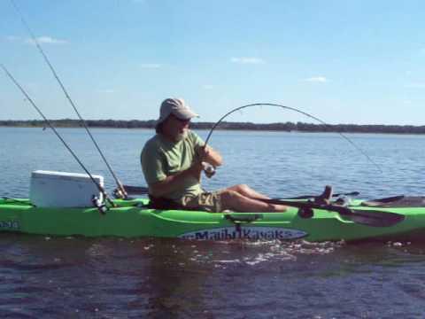 Mayak state park fresh water gator caught fishing in a for Freshwater kayak fishing