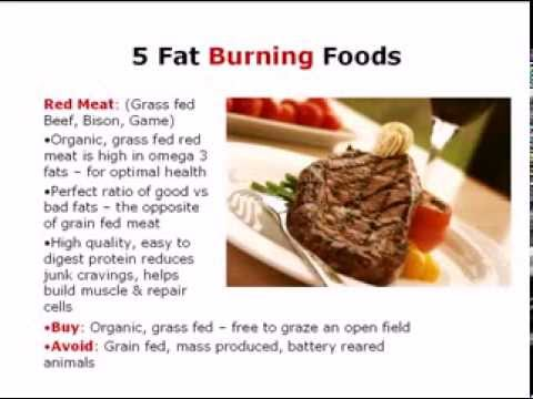 Top fat burning foods foods that burn fat naturally youtube
