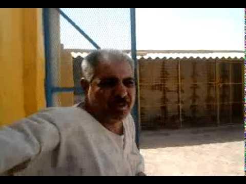 حمام زاجل صاحب نقطه مشتركه في عراق