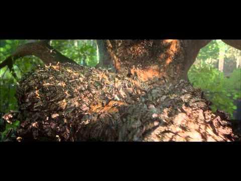 Epic - Trận Hùng Chiến Xứ Sở Lá Cây - Trailer J