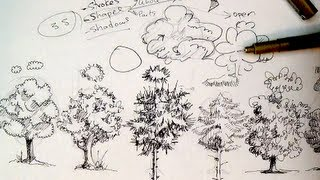 Pen & Ink Drawing Tutorials How To Draw Trees