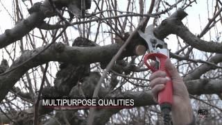 Felcotronic para fruticultura