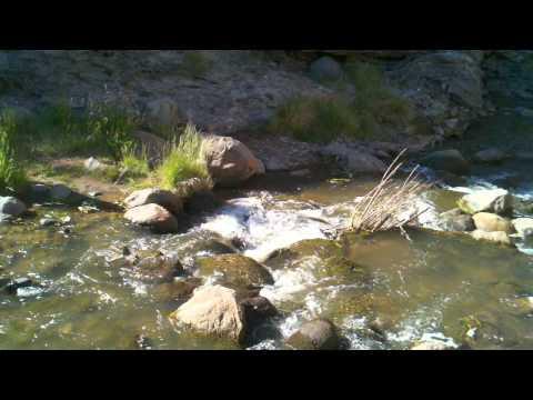 Kayden makes it a cross the river