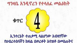 የቀጣዩ የትግል እርከን መነሾዎች! Awareness Campaign _4 By Dimtsachinyisema 4