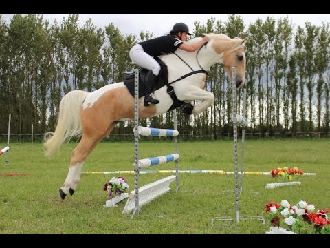 Jumping with no bridle