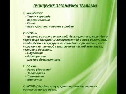 Травяные для очищения организма