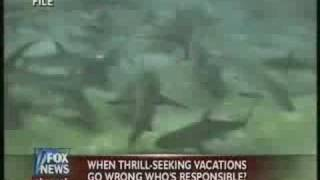 Man Killed While Swimming With Sharks In Bahamas!