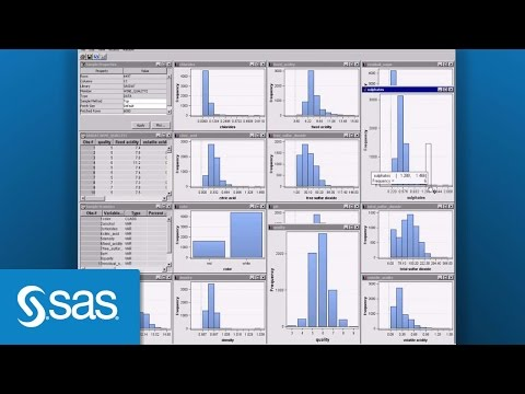 SAS® Enterprise Miner™ Software Demo