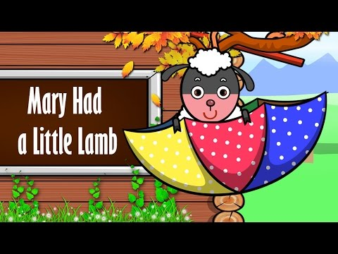 Mary Had A Little Lamb ♫ Nhạc Thiếu Nhi Vui Nhộn ♥ Học Tiếng Anh Qua Bài Hát ♫ ♫ ♫