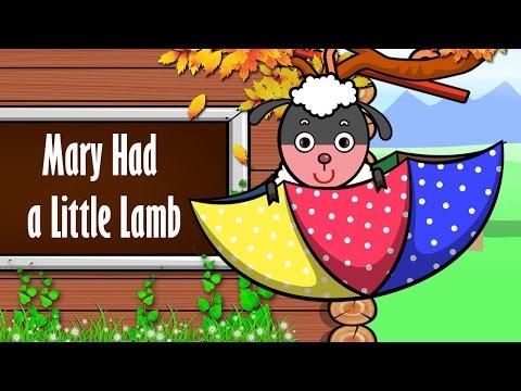 Mary Had A Little Lamb | Nhac Thieu Nhi Vui Nhon | Hoc Tieng Anh Qua Bai Hat