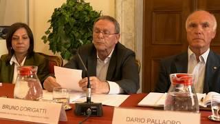 MINORANZE LINGUISTICHE: ATTIVITA' ED ELEMENTI DI CRITICITA' NELLA RELAZIONE ANNUALE