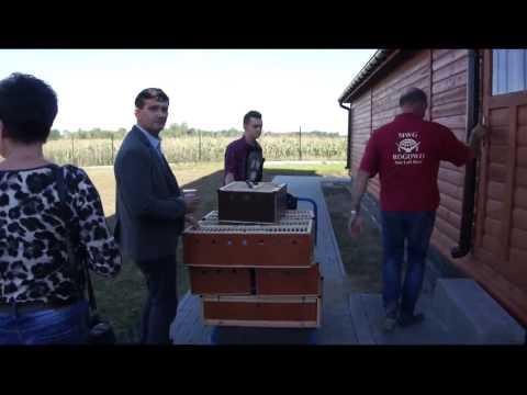 MWG Rogowo - wręczenie I nagrody, gołębie na sprzedaż - 03.09.2014r.