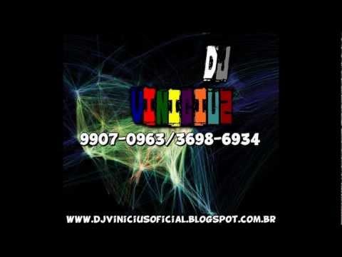 Mega Funk 2013 (Dj Vinicius E Dj Leandro)