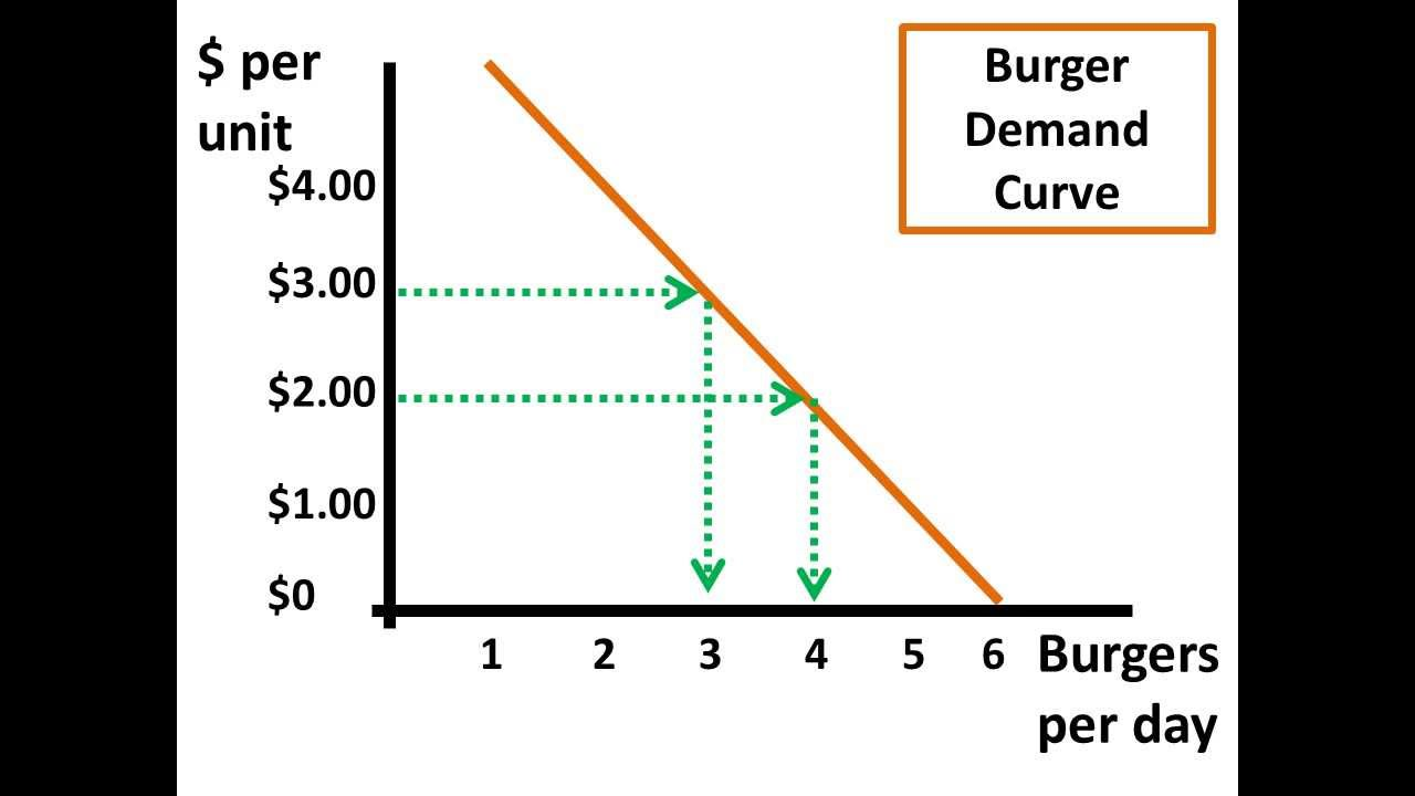 microeconomics elasticity concept of supply and demand Elasticity of demand and supply economists campbell r mcconnell of the university of nebraska and stanley l brue of pacific lutheran university state that price elasticity affects supply.