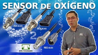 Sensor de Oxigeno MTE-THOMSON