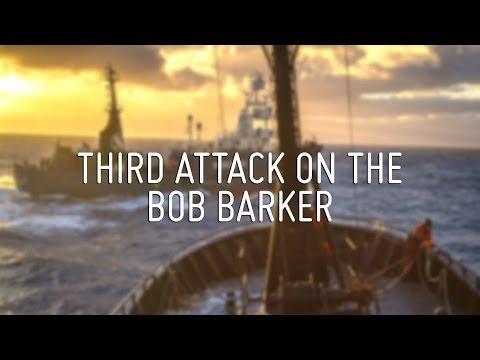 Media Reel - Third Attack on Bob Barker
