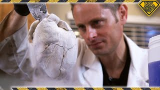 Dissecting Hearts With Liquid Nitrogen
