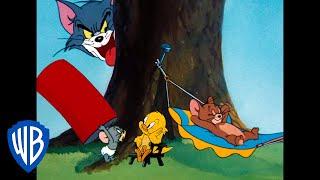Tom a Jerry - Dobrodružstvo